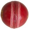 Cricket Ball Leather