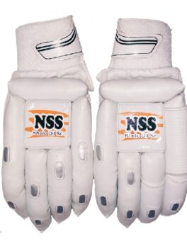 NS 200- Cricket Gloves for Batting