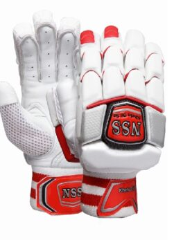 NS-500 Cricket Batting Gloves 1 (1)