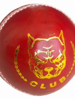 50-50 Overs club cricket ball