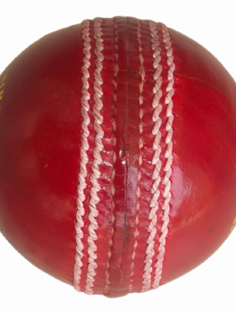 Cricket Leather Ball Club 20-20